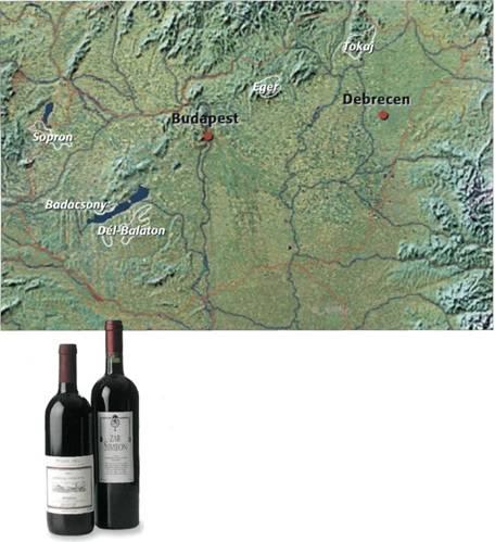 Венгрия – прошлое и настоящее виноделия: http://eniw.ru/vengriya-proshloe-i-nastoyashhee-vinodeliya.htm